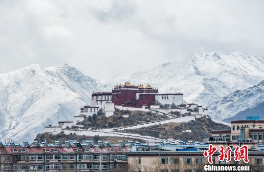 """西藏拉萨降春雪 雪域 """"圣城""""再披银装"""
