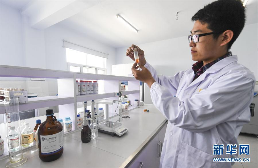 河北故城:打造国际一流的画材基地