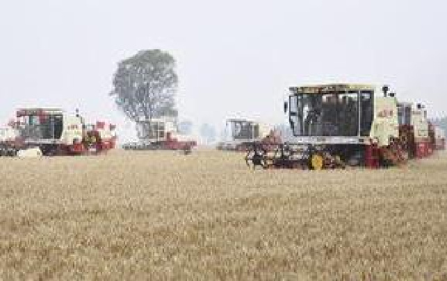 河南郏县:800余辆收割机备战麦收