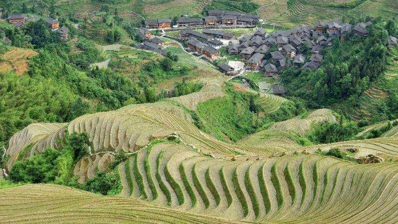 营口全域划定永久基本农田9.6万公顷