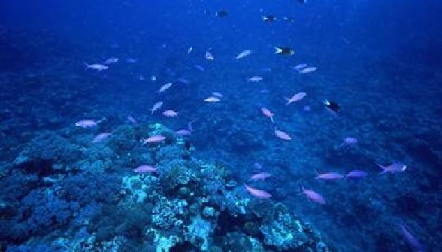 我们为什么要探索海洋?