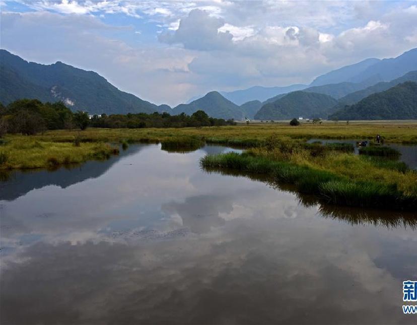 神农架大九湖开始进入最美季节
