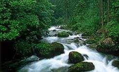文山州将投7000余万元治理水土流失