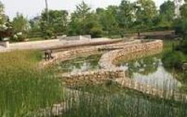 桐庐百江镇的河道管理新模式
