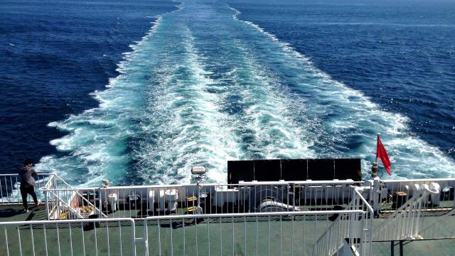 大连海事局成功保障81万旅客安全出行