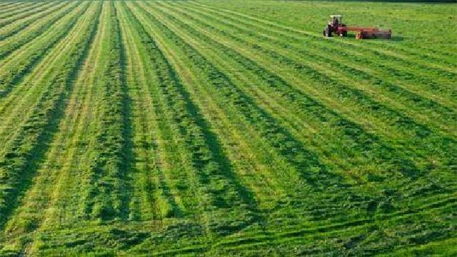 辽宁省安排750万元用于耕地质量保护与提升
