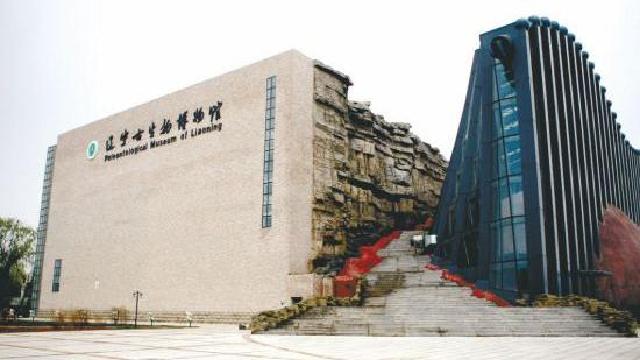 沈师古生物博物馆开设古鸟特展