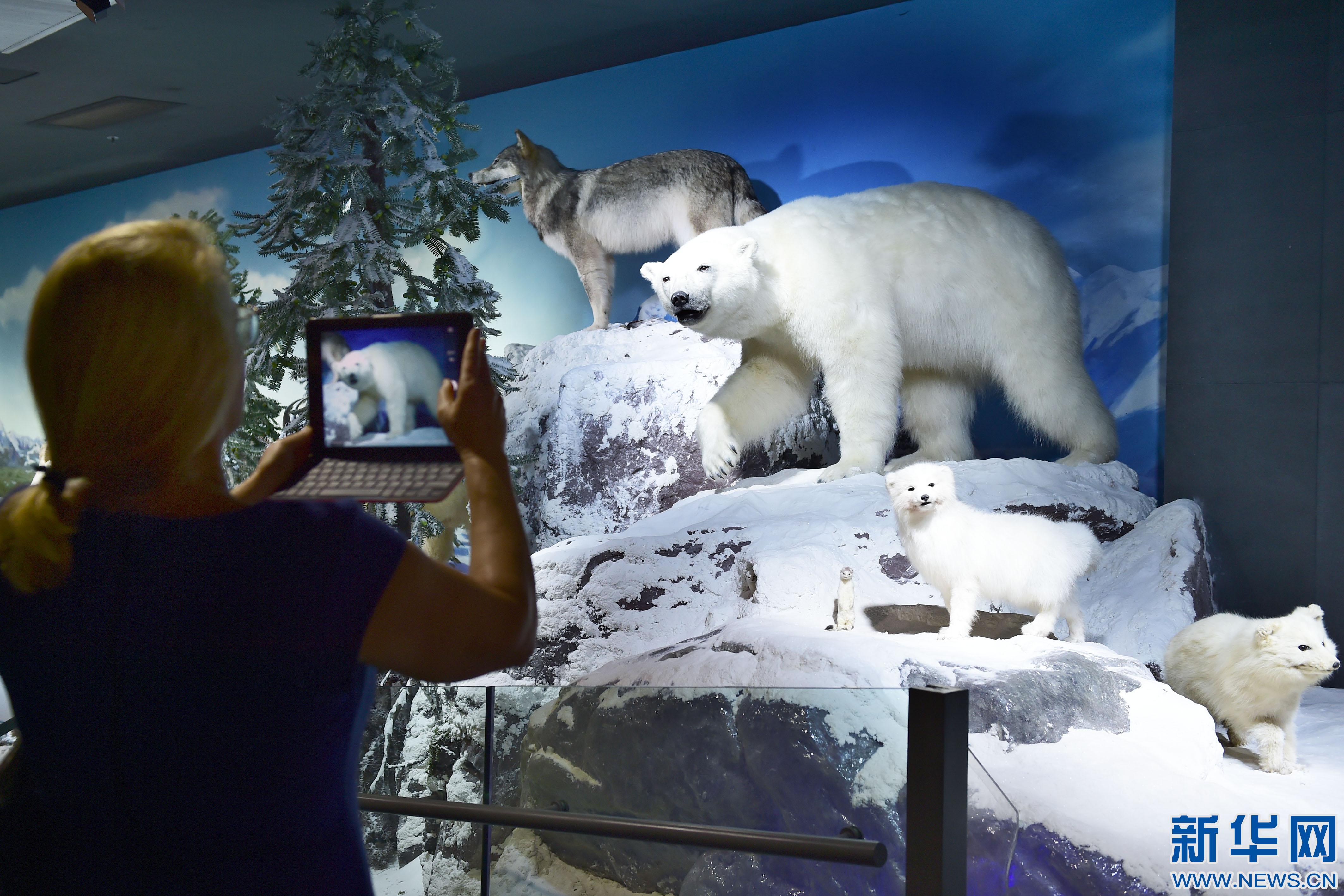 杭州举办世界野生动物展