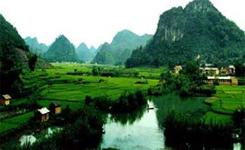 富宁县完成2016年政协提案办理工作