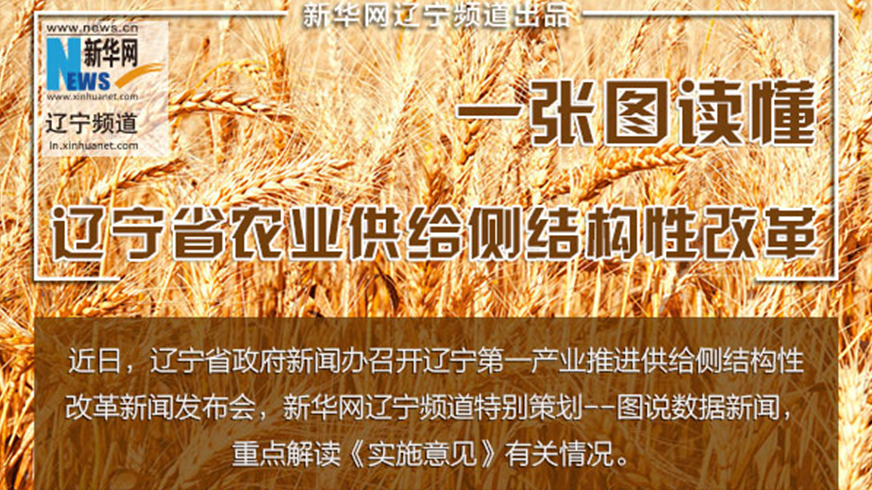 【图说供给侧结构性改革】一图读懂辽宁农业供给侧结构性改革