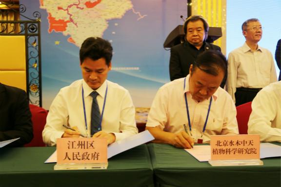 江州区在第13届中国—东盟博览会签约3个项目