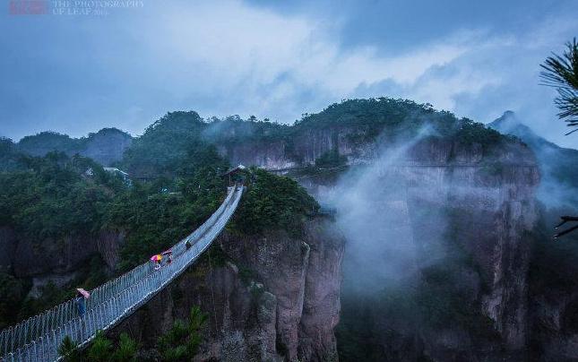 中国县域绿色发展(仙居)论坛开幕