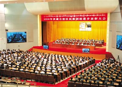 西藏民族团结进步表彰大会举行