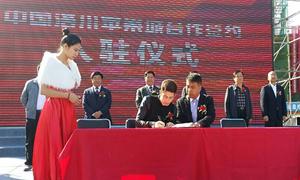 洛川苹果产业发展论坛暨陕西苹果营销推介会举行签约仪式