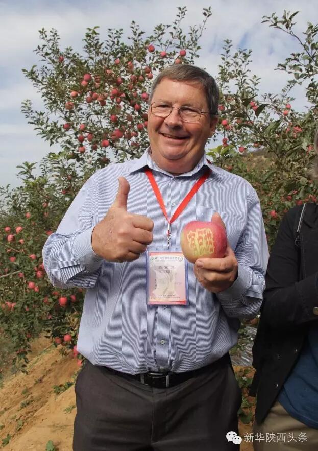 一颗小苹果 陕西如何用它圈粉全世界?