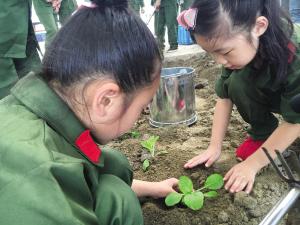 给孩子童年留个美好记忆 周末邀您去姚江农场体验秋收快乐