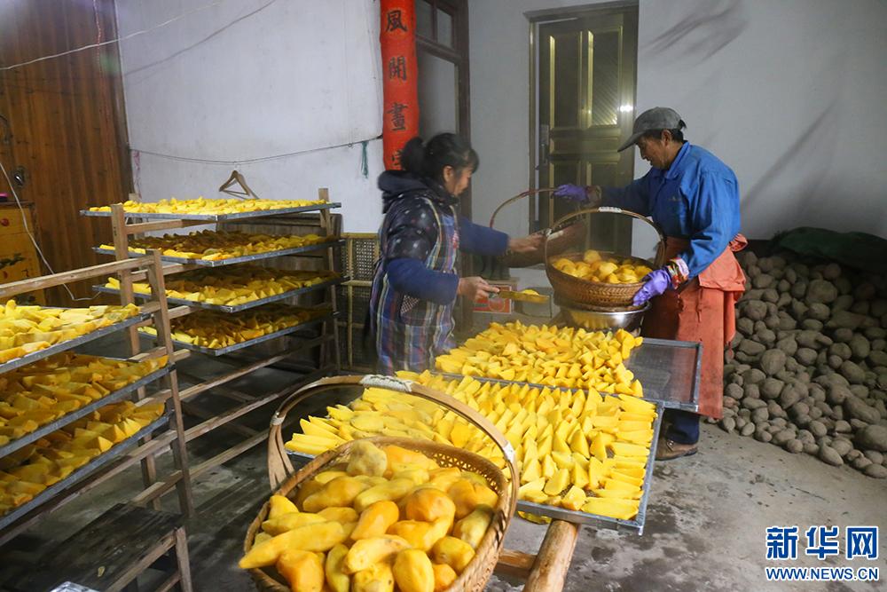 """[网络媒体走转改]白马地瓜干成为枫树林镇山区群众的""""香饽饽"""""""