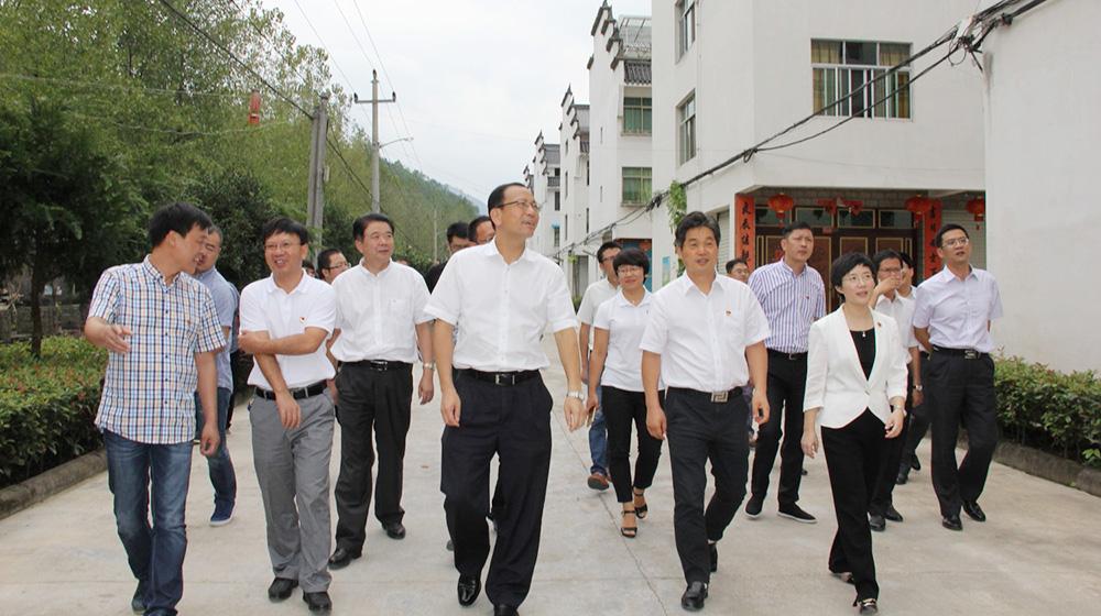 丽水市委书记史济锡在丽新、老竹畲族乡镇调研