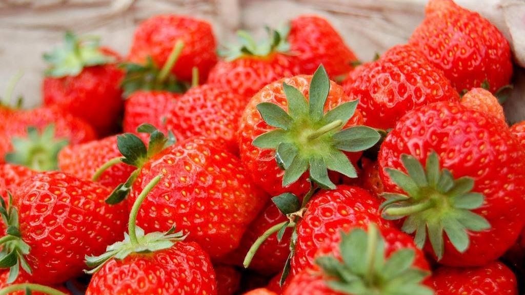 初春草莓来报到!选草莓要记住这几件事