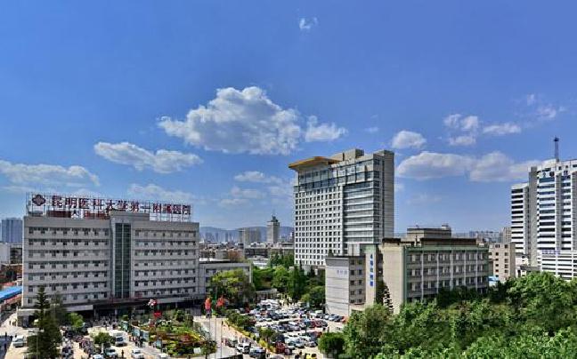 云南开通国际医疗互联网 家门口就能找美国医生看病