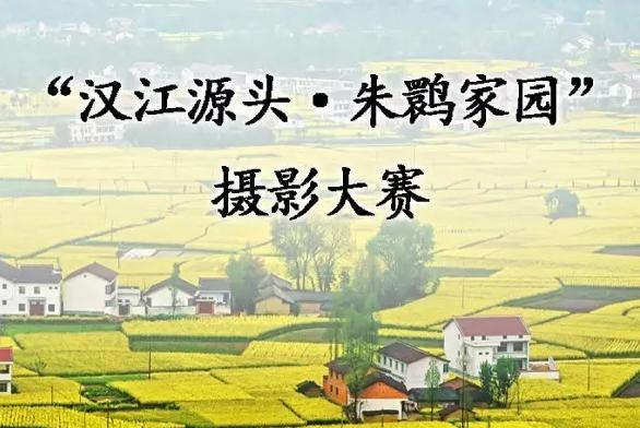"""""""汉江源头·朱鹮家园""""摄影大赛正式启动"""