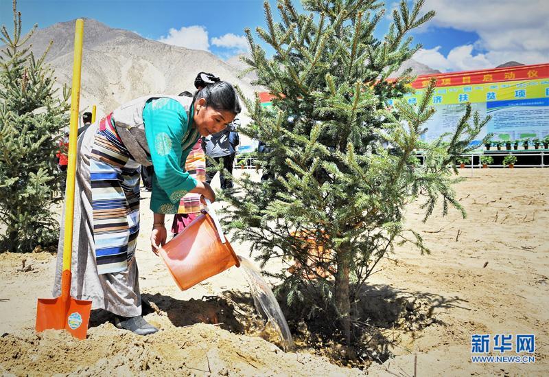 雅鲁藏布江山南段启动治沙生态扶贫项目