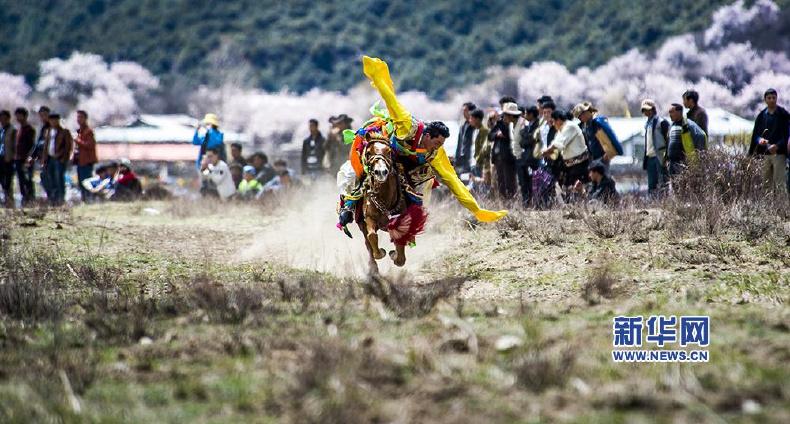 新华网西藏频道特别策划并报道:西藏松宗赛马暨民俗文化节