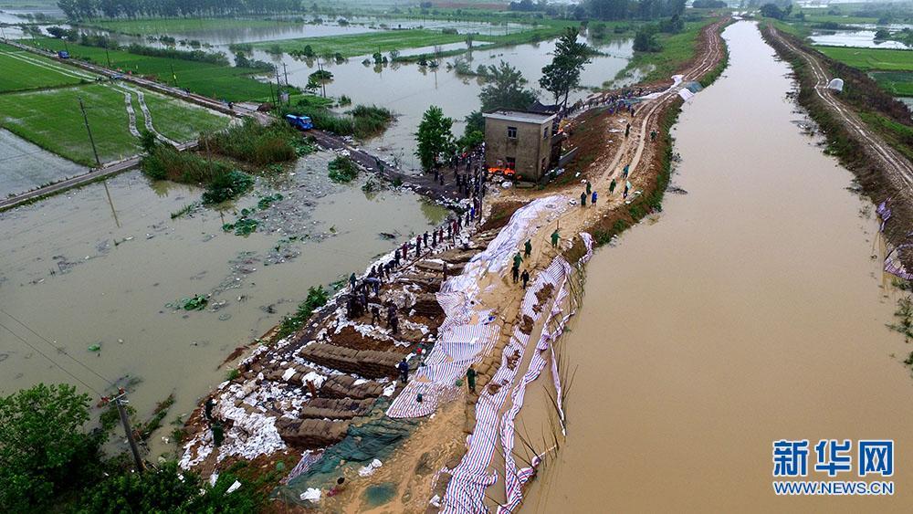 新华网航拍:和县长江及各条内河全部超警戒水位