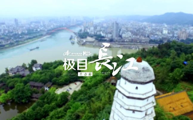 这样的长江你见过吗? 航拍:极目长江·生态篇