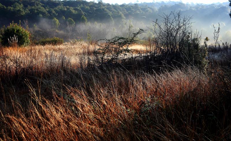 冬日石林:美丽乡村如诗如画