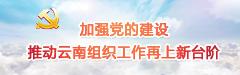加强党的建设 推动云南组织工作再上新台阶