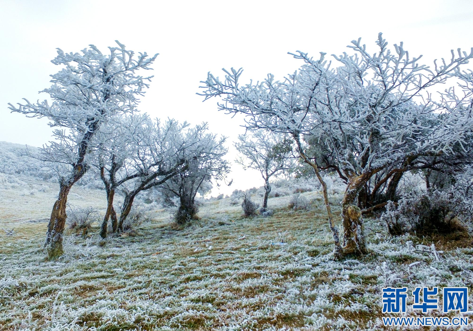 换个季节瞰 江西石城县八卦脑这样美