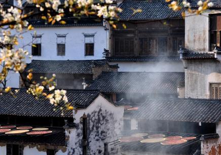 """婺源篁岭:在开满鲜花的春天体验""""晒秋"""""""