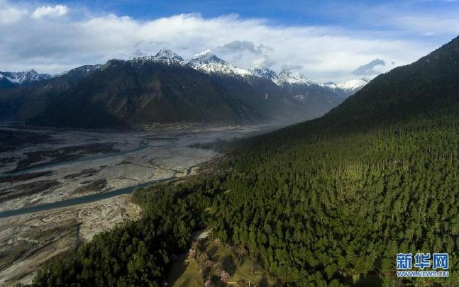 齐扎拉主持召开西藏自治区政府常务会议