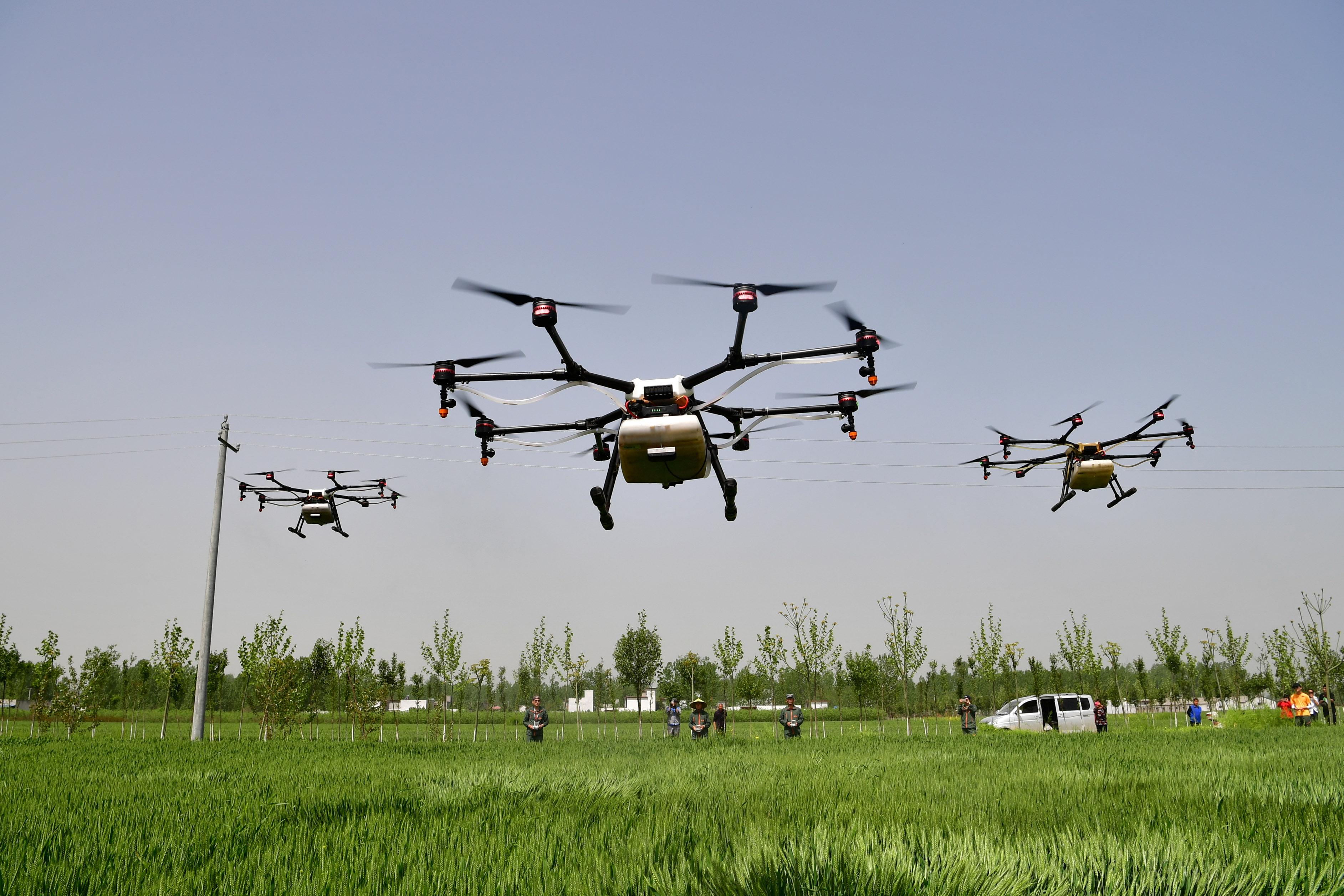 """无人机植保助力小麦""""一喷三防"""""""