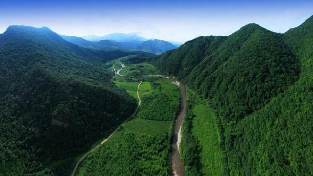 辽宁:集体森林资源流转期限不超70年