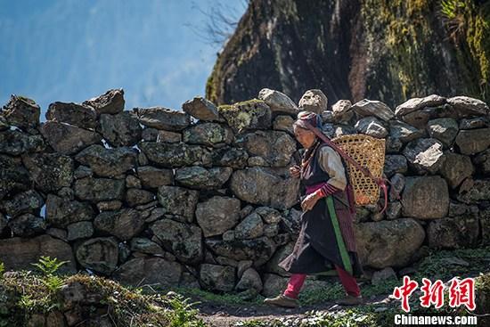 """雪域西藏""""世外桃源""""的蹒跚起步"""