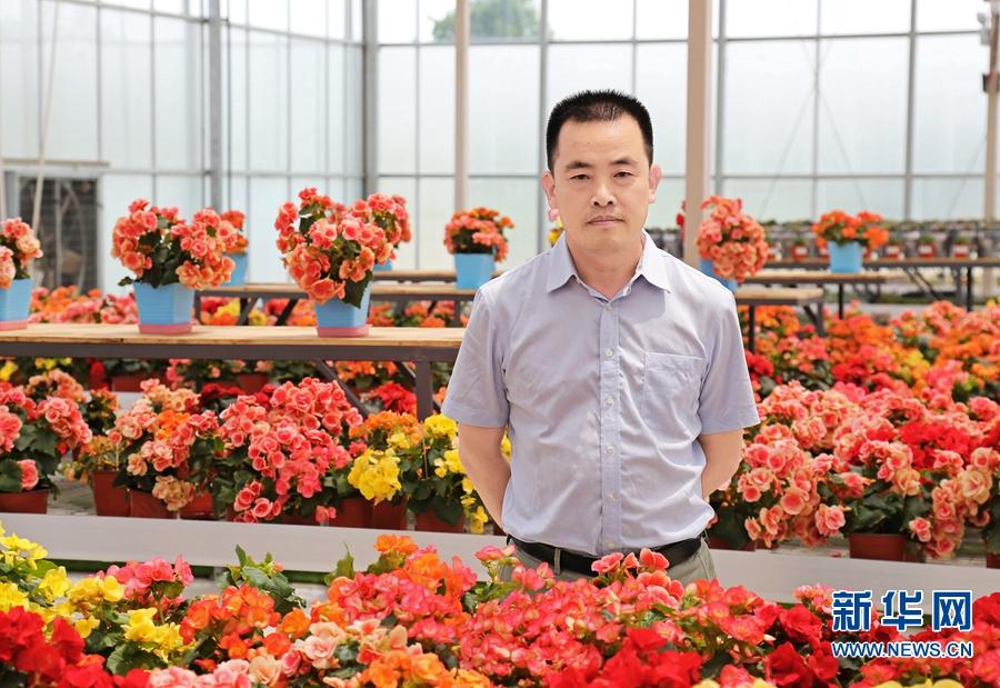 """【我为中原出彩做贡献】郑红初:""""一产三产化""""走出现代农业发展之路"""