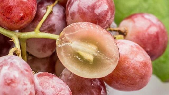 水果连籽吃要当心