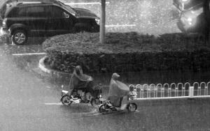 石家庄:雨中感人故事一幕幕 温暖整座城