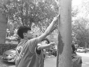 """石家庄:""""爱心社""""志愿者电话是空巢老人的""""必备号码"""""""