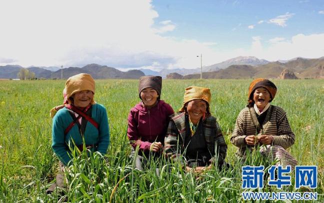 吴英杰:坚决贯彻落实党中央要求 全力做好西藏各项工作