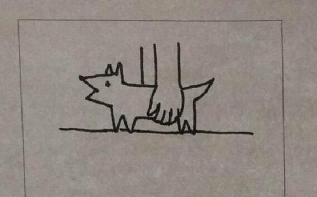 一幅漫画秒懂:抱狗和抱猫的区别