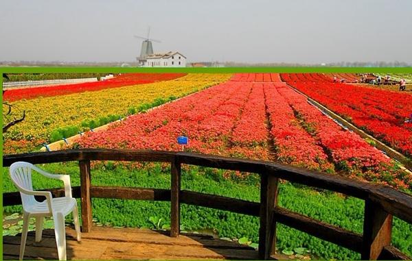 国际农业合作成为今年农高会重头戏