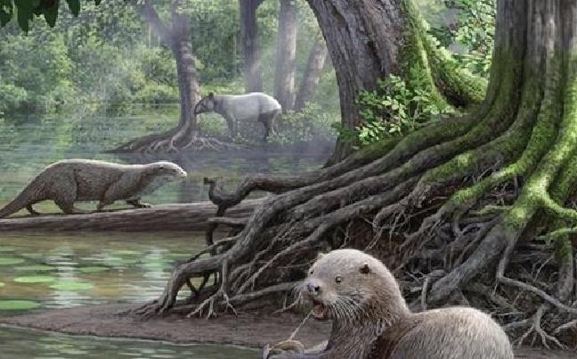 600万年前的云南昭通曾有2米巨型水獭