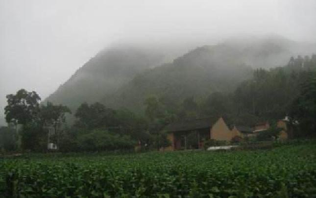 卢氏县优化农业产业结构推动农业提质增效