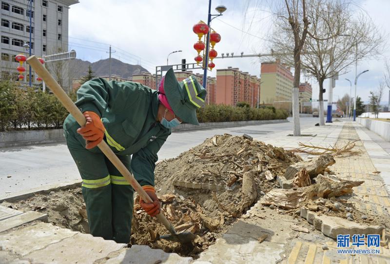 拉萨:园林工人春补忙