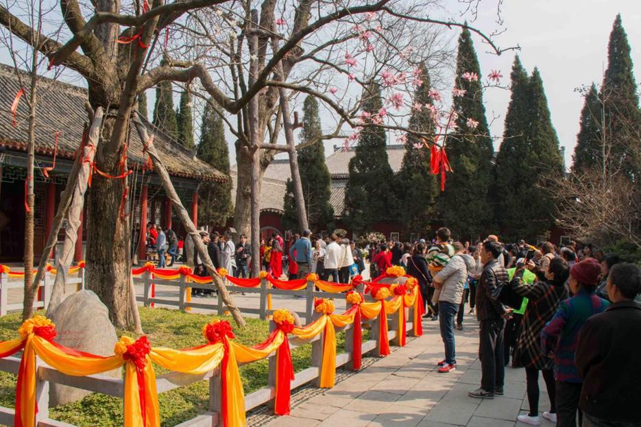 汉中第十届旱莲文化艺术节开幕