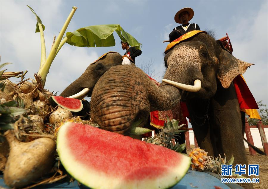 泰国庆祝大象日