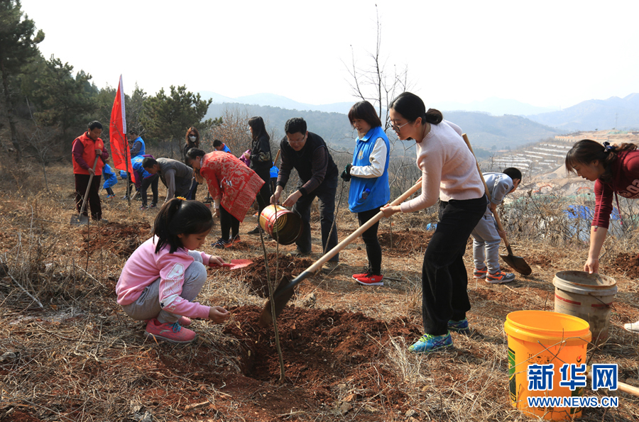 志愿者走进大山义务植树